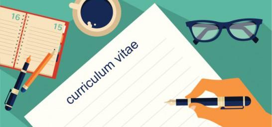 modelo currículum vector