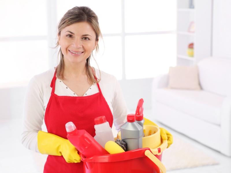 modelo contrato empleada de hogar tareas