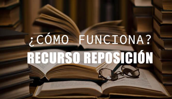 modelo recurso de reposición cómo funciona