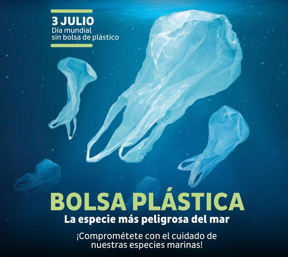 modelo 751 día mundial sin bolsas de plástico